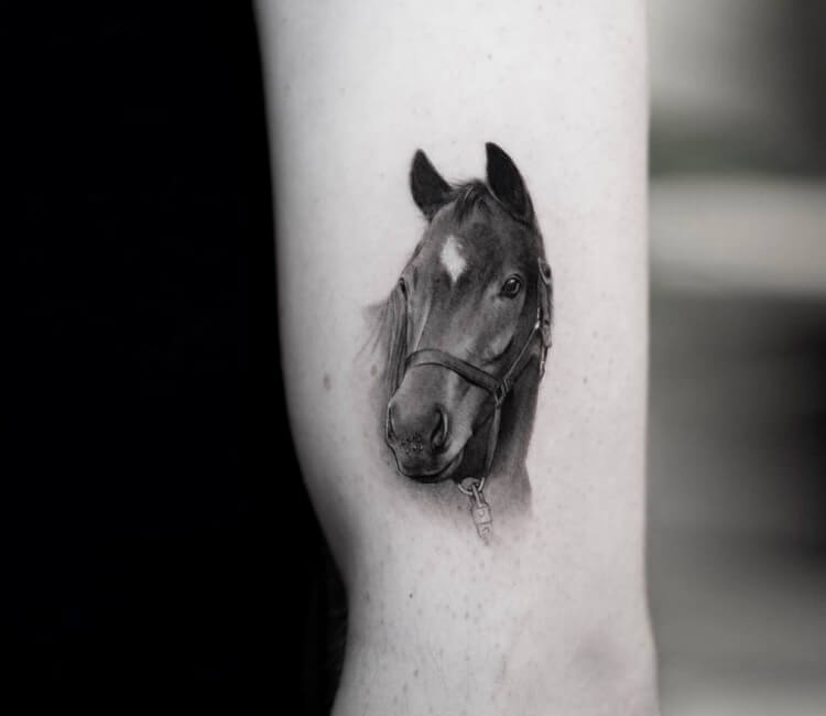 horse head tattoo by ben tats | post 31452  world tattoo gallery