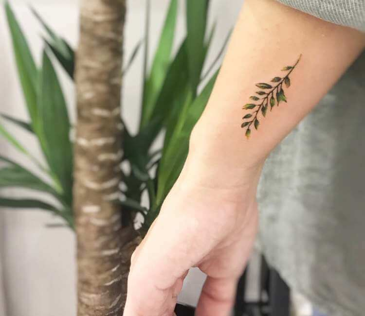 plant tattoo by cana arik tattoos