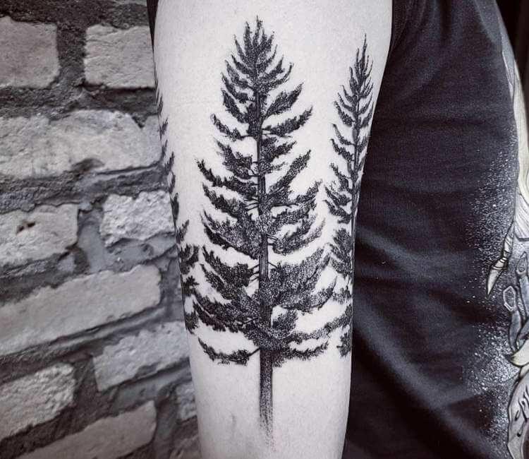 Pine Tree Tattoo By Felipe Kross Post 25671