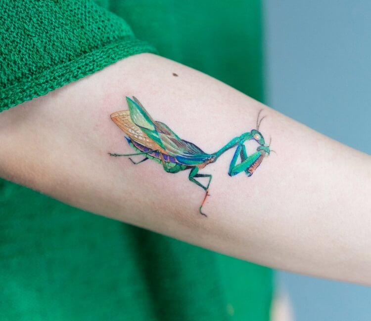 Mantis Tags Tattoo Ideas World Tattoo Gallery
